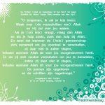 Waak over de voorschriften van Allah